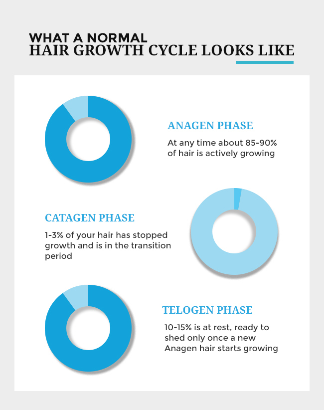 infograph-hair-loss-solution