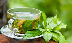 antioxidants in green tea